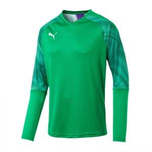 puma-cup-torwarttrikot-langarm-gruen-f43-fussball-teamsport-textil-torwarttrikots-703771.jpg