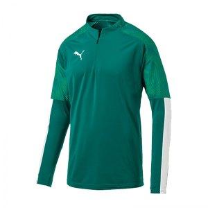 puma-cup-training-1-4-zip-top-gruen-f05-fussball-teamsport-textil-sweatshirts-656016.jpg