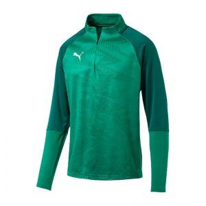 puma-cup-training-core-1-4-zip-top-gruen-f05-fussball-teamsport-textil-sweatshirts-656018.jpg