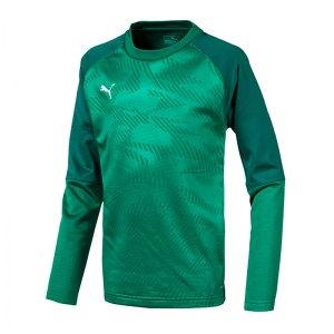 puma-cup-training-core-sweatshirt-kids-gruen-f05-fussball-teamsport-textil-sweatshirts-656022.jpg