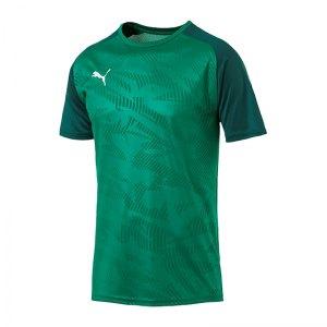 puma-cup-training-core-t-shirt-gruen-f05-fussball-teamsport-textil-t-shirts-656027.jpg