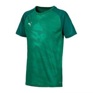 puma-cup-training-core-t-shirt-kids-gruen-f05-fussball-teamsport-textil-t-shirts-656028.jpg