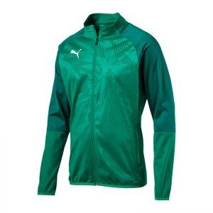 puma-cup-training-poly-jacket-core-gruen-f05-fussball-sport-mannschaft-spass-verein-656014.jpg
