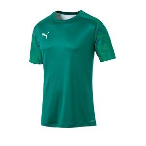 puma-cup-training-t-shirt-gruen-f05-fussball-teamsport-textil-t-shirts-656023.jpg