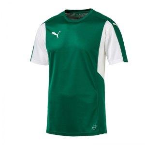 puma-dominate-trikot-kurzarm-gruen-weiss-f05-shortsleeve-shirt-jersey-matchwear-spiel-training-teamsport-703063.jpg