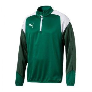 puma-esito-4-1-4-zip-top-training-f05-sportbekleidung-kids-longsleeve-langarm-655220.jpg