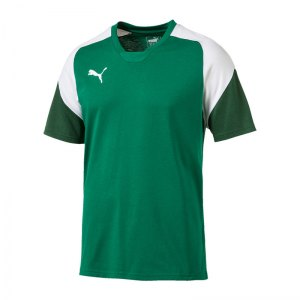 puma-esito-4-tee-t-shirt-gruen-weiss-f05-teamsport-herren-men-maenner-shortsleeve-kurzarm-shirt-655226.jpg