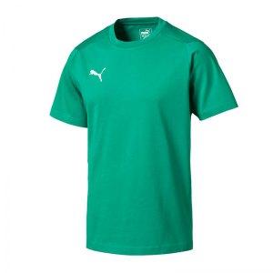 puma-liga-casuals-tee-t-shirt-f05-fussball-spieler-teamsport-mannschaft-verein-655311.jpg