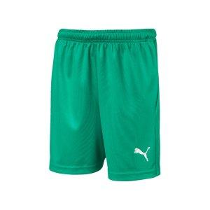 puma-liga-core-short-mit-innenslip-kids-gruen-f05-fussball-spieler-teamsport-mannschaft-verein-703616.jpg