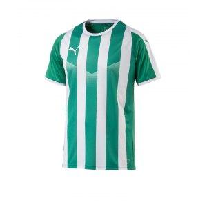 puma-liga-striped-trikot-kurzarm-gruen-weiss-f15-teamsport-textilien-sport-mannschaft-erwachsene-703424.jpg