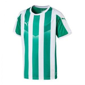 puma-liga-striped-trikot-kurzarm-kids-gruen-f15-teamsport-textilien-sport-mannschaft-kinder-jugendliche-703425.jpg