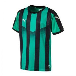 puma-liga-striped-trikot-kurzarm-kids-gruen-f24-teamsport-textilien-sport-mannschaft-kinder-jugendliche-703425.jpg