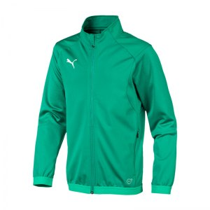 puma-liga-training-jacket-trainingsjacke-kids-f05-fussball-spieler-teamsport-mannschaft-verein-655688.jpg