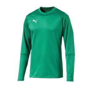 puma-liga-training-sweatshirt-gruen-f05-teampsort-mannschaft-ausruestung-655669.jpg