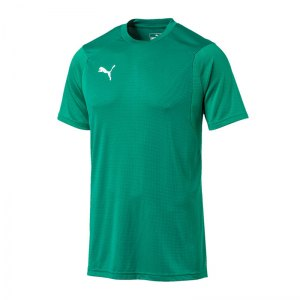 puma-liga-training-t-shirt-gruen-f05-shirt-team-mannschaftssport-ballsportart-training-workout-655308.jpg