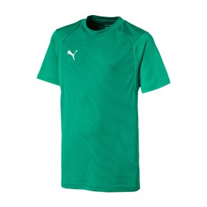 puma-liga-training-t-shirt-kids-gruen-weiss-f05-fussball-spieler-teamsport-mannschaft-verein-655631.jpg