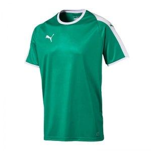 puma-liga-trikot-kurzarm-gruen-weiss-f05-funktionskleidung-vereinsausstattung-team-ausruestung-mannschaftssport-ballsportart-703417.jpg