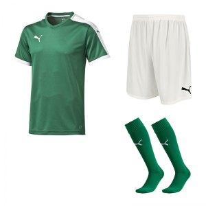 puma-pitch-e-trikotset-gruen-f20-team-mannschaft-sport-erwchsene-bekleidung-spiel-match-teamwear-702070-701945-702565.jpg