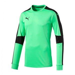 puma-triumphant-gk-shirt-torwarttrikot-gruen-f50-torwart-goalkeeper-longsleeve-langarm-herren-men-maenner-702195.jpg