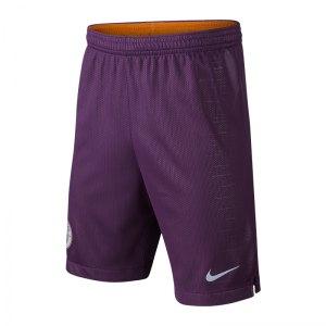 nike-manchester-city-short-ucl-kids-2018-2019-f537-replicas-shorts-international-textilien-940482.jpg