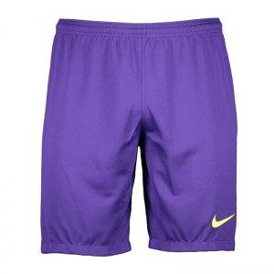 nike-promo-torwartshort-lila-f547-fussball-teamsport-mannschaft-ausruestung-textil-torwarthosen-919785.jpg