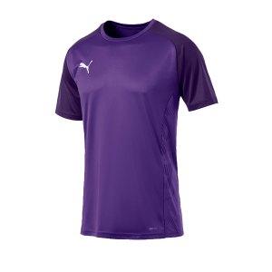 puma-cup-sideline-core-t-shirt-lila-f10-fussball-teamsport-textil-t-shirts-656051.jpg