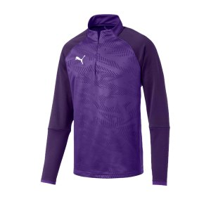 puma-cup-training-core-1-4-zip-top-lila-f10-fussball-teamsport-textil-sweatshirts-656018.jpg
