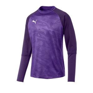 puma-cup-training-core-sweatshirt-lila-f10-fussball-teamsport-textil-sweatshirts-656021.jpg