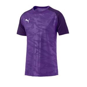 puma-cup-training-core-t-shirt-lila-f10-fussball-teamsport-textil-t-shirts-656027.jpg