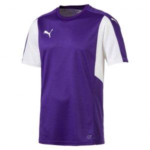 puma-dominate-trikot-kurzarm-lila-weiss-f10-shortsleeve-shirt-jersey-matchwear-spiel-training-teamsport-703063.jpg