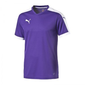 puma-pitch-shortsleeved-shirt-trikot-kurzarmtrikot-jersey-herrentrikot-teamwear-vereinsausstattung-men-herren-lila-f10-702070.jpg