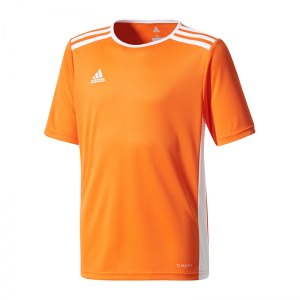 adidas-entrada-18-trikot-kurzarm-kids-orange-weiss-teamsport-mannschaft-ausstattung-shirt-shortsleeve-cd8366.jpg