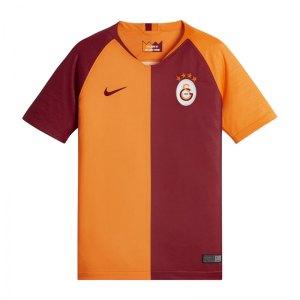 nike-galatasaray-istanbul-trikot-home-2018-2019-kids-f837-fanbekleidung-fanausstattung-replica-fankleidung-919239.jpg