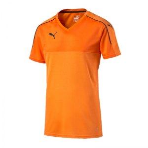 puma-accuracy-trikot-kurzarm-jersey-teamsport-vereine-men-herren-maenner-orange-schwarz-f08-702214.jpg