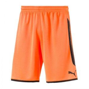 puma-gk-short-torwartshort-orange-schwarz-f44-torwart-goalkeeper-torspieler-short-hose-kurz-herren-men-maenner-703068.jpg