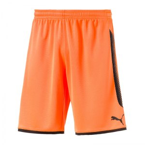 puma-gk-short-torwartshort-orange-schwarz-f44-torwart-goalkeeper-torspieler-short-hose-kurz-herren-men-maenner-703068.jpg
