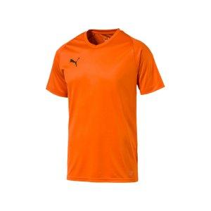 puma-liga-core-trikot-kurzarm-f08-mannschaft-verein-teamsport-ausstattung-703509.jpg