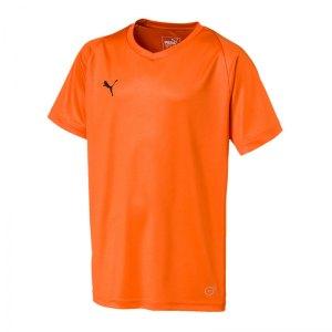 puma-liga-core-trikot-kurzarm-kids-orange-f08-teamsport-mannschaft-spiel-703542.jpg