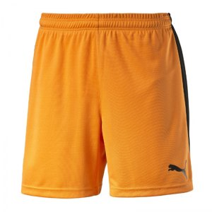 puma-pitch-short-mit-innenslip-hose-kurz-kindershort-teamwear-teamsport-vereinsausstattung-kids-children-kinder-orange-f08-702075.jpg