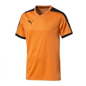 puma-pitch-shortsleeved-shirt-trikot-kurzarmtrikot-jersey-kindertrikot-teamwear-vereinsausstattung-kids-children-orange-f08-702070.jpg