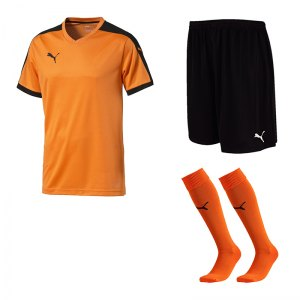 puma-pitch-e-trikotset-orange-f08-team-mannschaft-sport-bekleidung-spiel-match-teamwear-702070-701945-702565.jpg