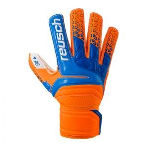 reusch-prisma-rg-finger-support-tw-handschuh-f290-torwart-fussball-football-soccer-sport-freizeit-3870610.jpg
