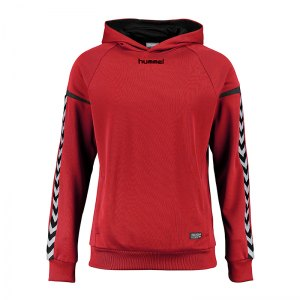 hummel-authentic-charge-kapuzensweat-kids-f3062-teamsport-mannschaft-sport-ausstattung-133403.jpg