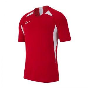 nike-striker-v-trikot-kurzarm-rot-f657-fussball-teamsport-textil-trikots-aj0998.jpg
