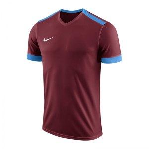 nike-dry-park-derby-ii-trikot-rot-blau-f677-trikot-shirt-team-mannschaftssport-ballsportart-894312.jpg