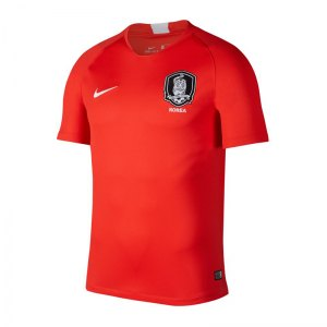 nike-suedkorea-trikot-home-wm-2018-rot-f696-replica-fifa-turnier-jersey-aq9684.jpg