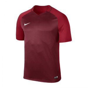 nike-trophy-iii-dry-team-trikot-kurzarm-kids-f677-trikot-kinder-shortsleeve-kids-fussball-training-spiel-881484.jpg