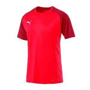 puma-cup-sideline-core-t-shirt-rot-f01-fussball-teamsport-textil-t-shirts-656051.jpg