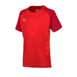 puma-cup-sideline-core-t-shirt-kids-rot-f01-fussball-teamsport-textil-t-shirts-656052.jpg