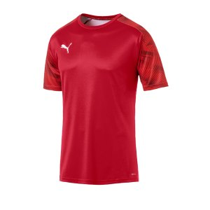 puma-cup-training-t-shirt-rot-f01-fussball-teamsport-textil-t-shirts-656023.jpg